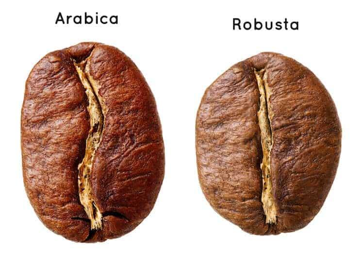 Арабика против Робусты с точки зрения кофеина